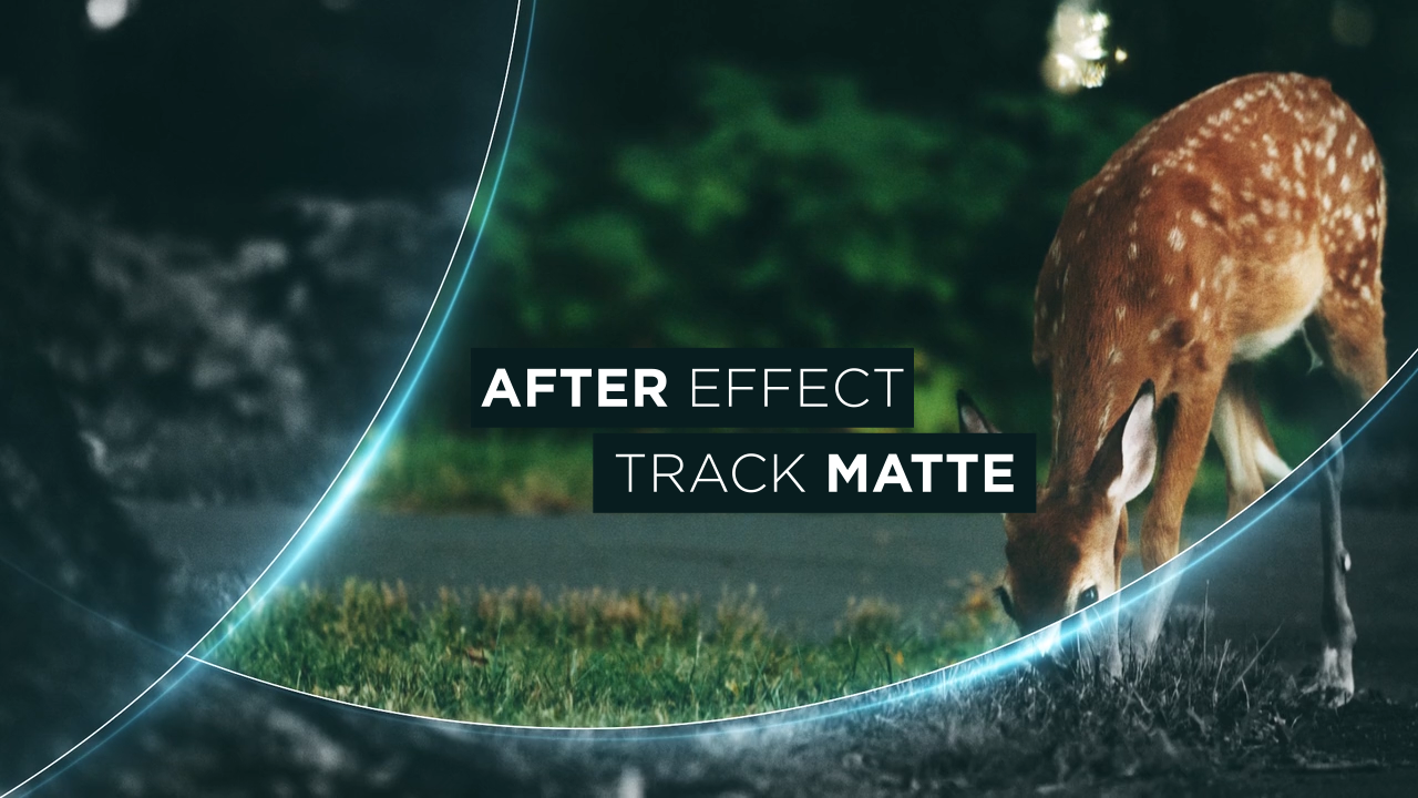Buổi học Trackmatte trong After Effect